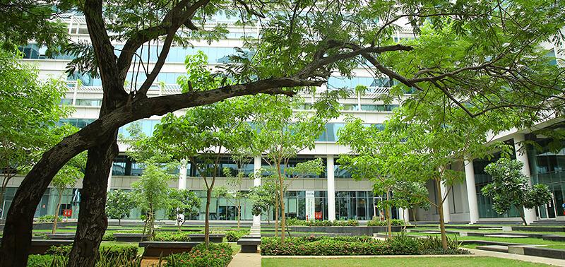 iitm-innovation-ecosystem-green fraternity